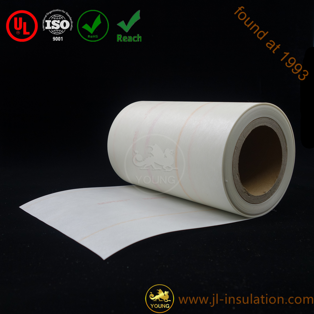 changzhou Nomex insulation paper 6640 NMN for motors and transformers