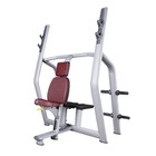 LZX-2034 gym fitness equipment with lower price in iran