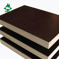 China manufacturer 18mm black brown film faced plywood prices