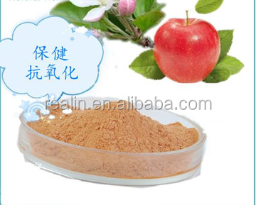apple extract polyphenol powder water soluble antioxidants for cosmetic