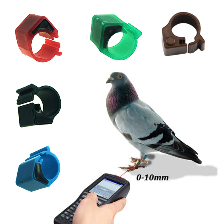 Bird Foot Rings 100 Pcs Aluminum Pigeon Foot Ring 8mm Bird Ring Identification Race Pigeons Color Ring Bird Tools Bird Foot Ring To Assure Years Of Trouble-Free Service Back To Search Resultshome & Garden