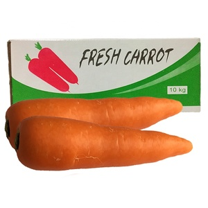 Chinese New Crop Fresh Carrots Exporter Wholesale Price