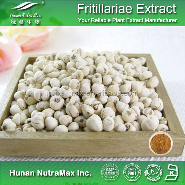 Bulbus Fritillariae Cirrhosae Extract Powder 10:1