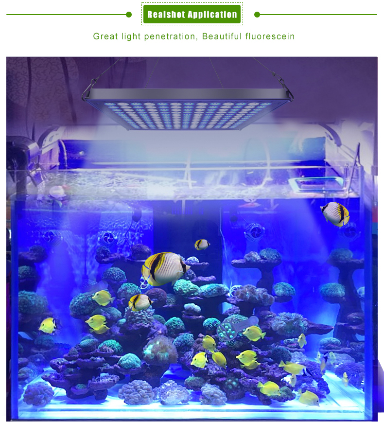 2018 Nieuwste amazon top verkoper led aquarium light panel voor aquarium
