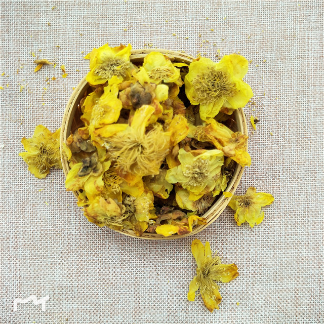 Flavor Blooming Flower Organic Camellia golden camellia flower bloom tea - 4uTea   4uTea.com