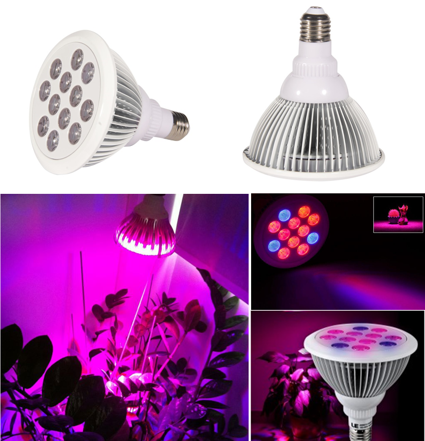Hot Selling Full Spectrum E27 Led Grow Light Indoor 12w 24w 36w Led Grow  Light E27 Bulb Growing Plant For Stretch Herb Veg Bloom - Buy 12w Led Grow