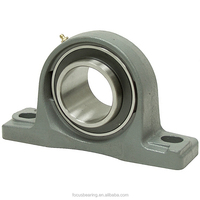 China Bearing Supplier P205 FK Pillow Block Bearing