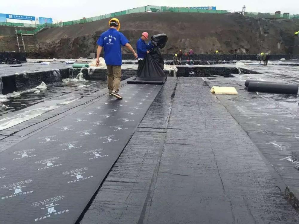 Self Sealing Membrane Roof : Pcm self adhesive roof modified asphalt waterproof