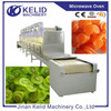 2015 New Product High Quality Fruit Vegetable Dryer
