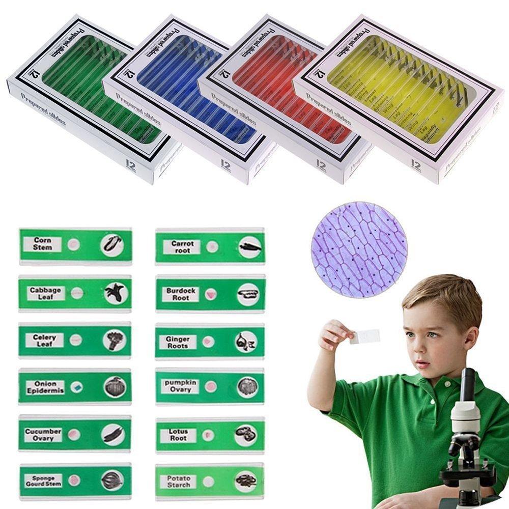 48pcs Plastic Prepared Microscope Slides Puzzle Biological Specimen Set for Kids