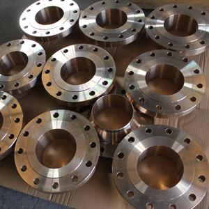 Factory price Stainless steel pn16 hot rolled forged floating flange