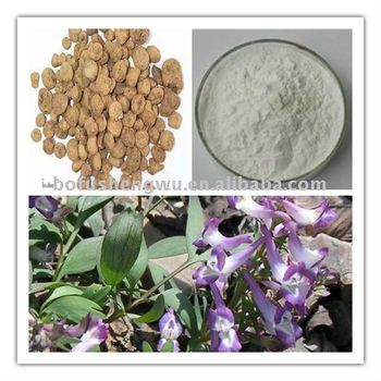 Natural herb plant High quality Manufacturer Corydalis Yanhusuo extract Tetrahydropalmatine80% by UV