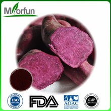 Herbal Medicine Natural purple potato color sweet potato p.e. for wholesale