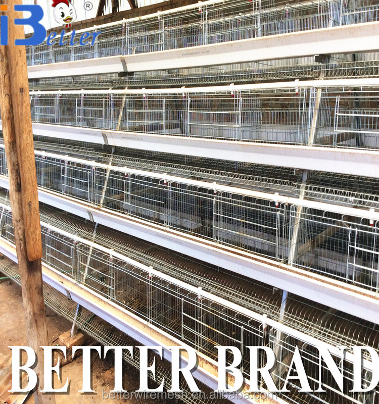2017 high quality & Lower price poultry layer cage