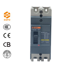 China supplier manufacturer 2 pole earth leakage circuit breaker 15-100A