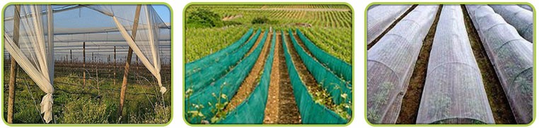 HDPE 45GSM Apple Tree Anti Hail Net in Garden