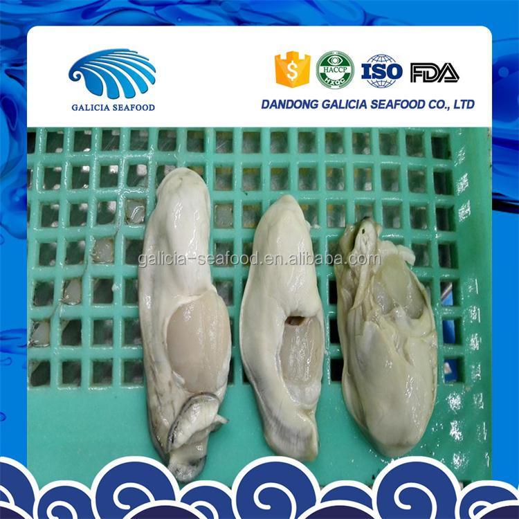 iqf frozen seafood oyster meat