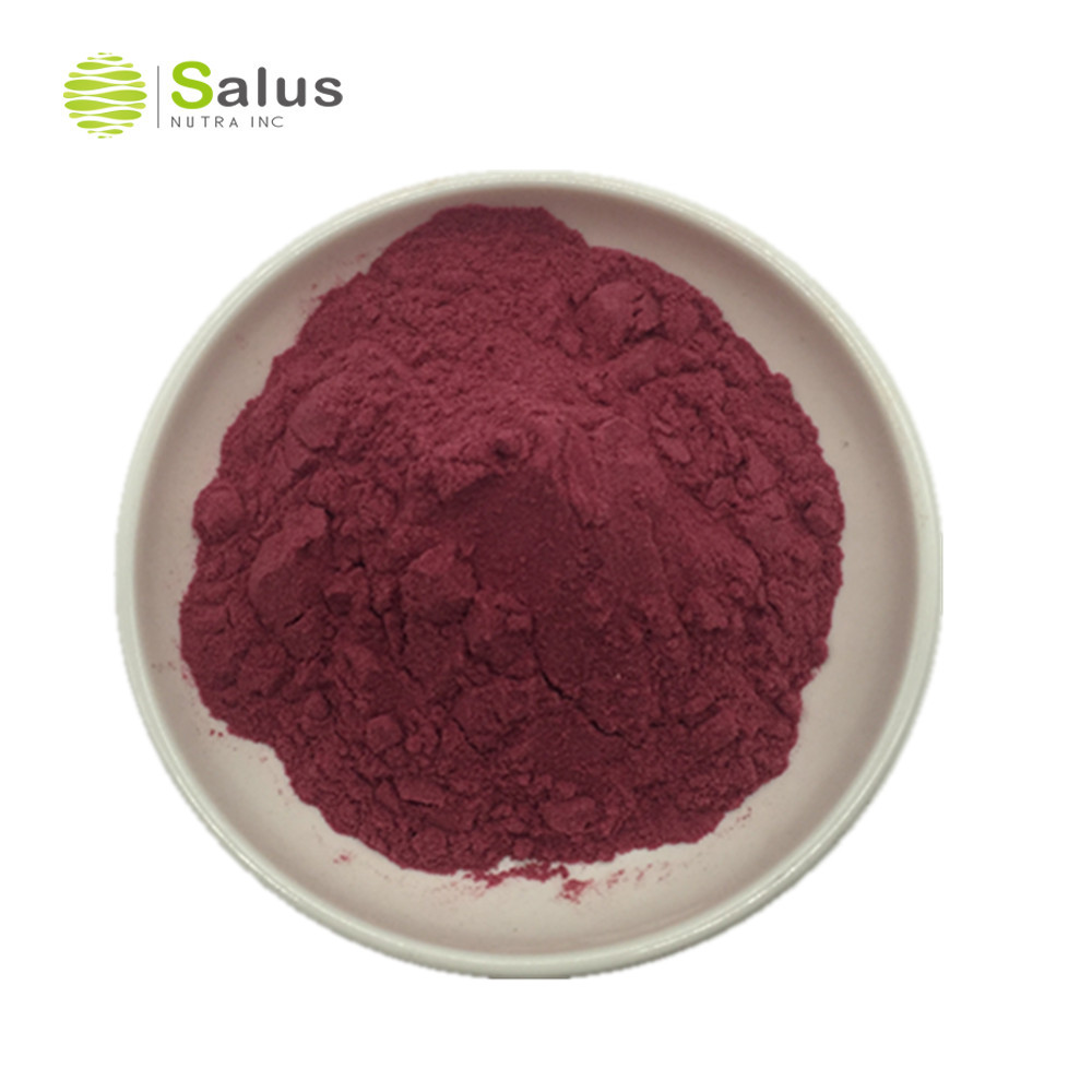 High Quality Pitaya Extract Dragon Fruit <strong>Powder</strong>