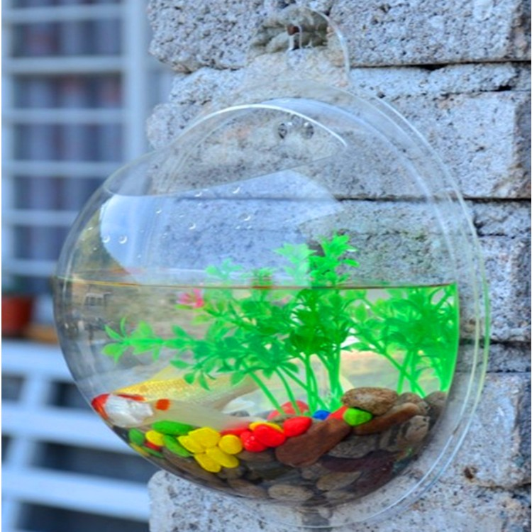 Wholesale Clear Used Acrylic Aquarium For Sale Buy Used