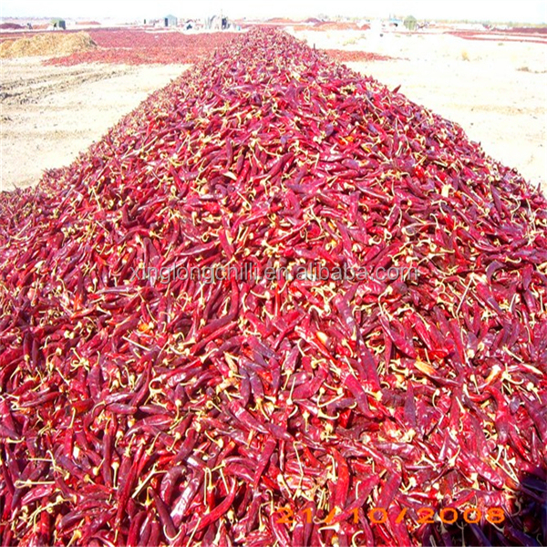 Dried Chili Pods Red Hot Pepper for Spices