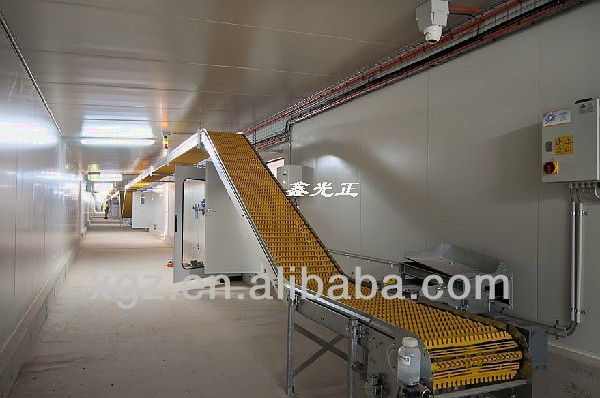 High Quality Steel Structure Building Layer Poultry Chicken Farm House and Equipment