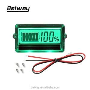 BW-TH01 12V 24v 36V 48V Lead-acid battery / lithium battery LCD battery voltage indicator