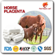 horse placenta extract tablet softgel pill supplement