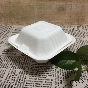 Biodegradable Bento Boxes Sugarcane Bagasse Food Packaging Tiffin Box Lunch