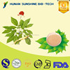 Herbal Extract No Pesticide Residues Ginseng Extract For promotion the DNA/RNA synthesis