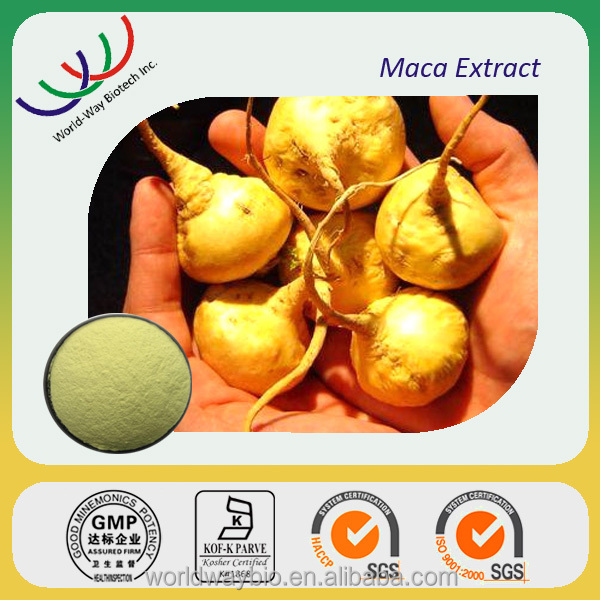 Traditional herb for sexual MACA root extract , 0.6% macamides&macaenes pure maca extract