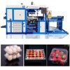 /product-detail/automatic-oral-liquid-plastic-tray-making-machine-for-sale-60702696032.html
