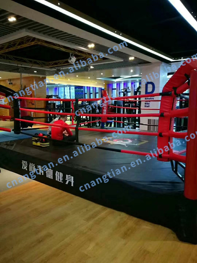 UFC fighting mma thai rings