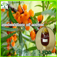 seabuckthorn fruit oil/seabuckthorn india/hippophae rhamnoides oil