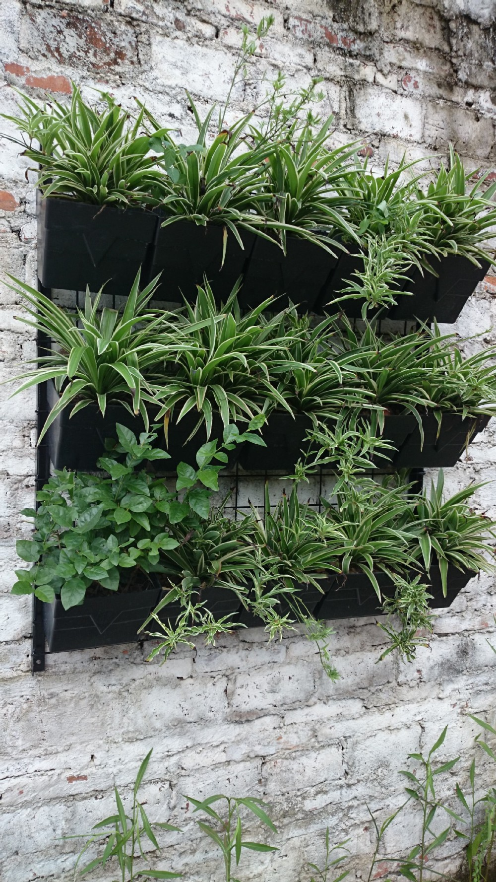 Hanging Planters Vertical Gardening Decorative Wall Hanging Planters And Flower