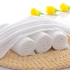 Terry Cloth Hand Towel Disposable Towels Terry Cloth Disposable Kitchen Airline Face Hand Towel
