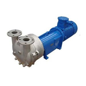 Water Ring Vaccum Pump 2 BV Series Liquid Ring Mini Electric Vacuum Pump