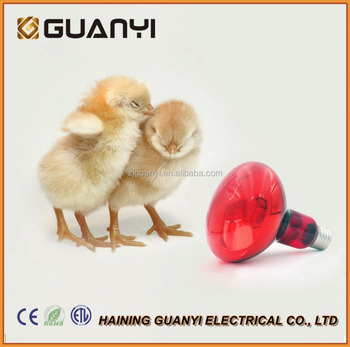 Poultry Heat Incubator Lamp 275w Red Bulb For Chicks Puppies Buy Heat Incubator Lamp Poultry Heat Incubator Lamp 275w Heat Lamp Product On