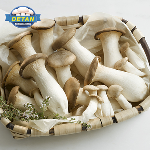 Detan Fresh King Oyster Mushroom For Export