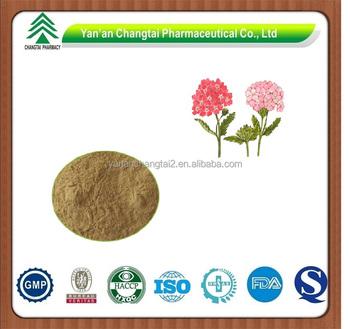 GMP factory supply herb organic lemon verbena Leaf extract