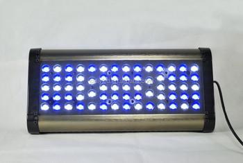 Marine Best Pt Led Lighting Buy rampe 200w Programmable Lighting Hot Aquarium Lighting Rampe marine In Europe OP8wn0k