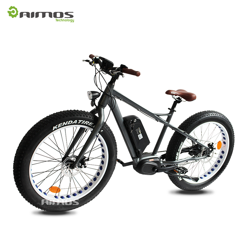 torque sensor AMS-TDE-09 snow electric bike with front fork suspension