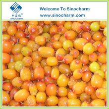 Sea Buckthorn Hippophae Frozen