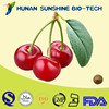 High quality acerola cherry extract boosting production of collagen and elastin