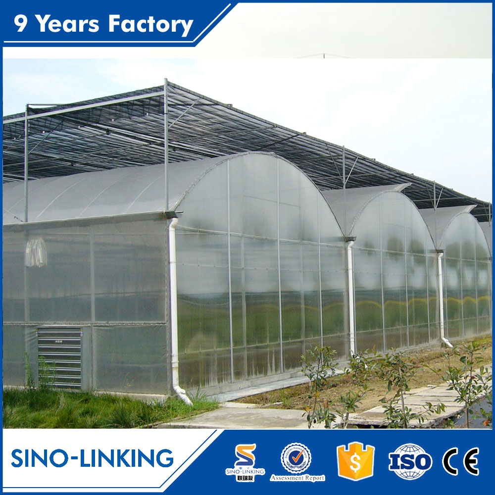 SINOLINKING gi square pipe for large size agriculture plastic greenhouses steel structure for mushroom