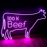led sign outdoor Wholesale top quality different styling diy neon sign