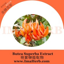 100% Natural High Quality butea superba 30:1