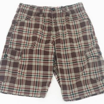 Business Casual Plaid Shorts