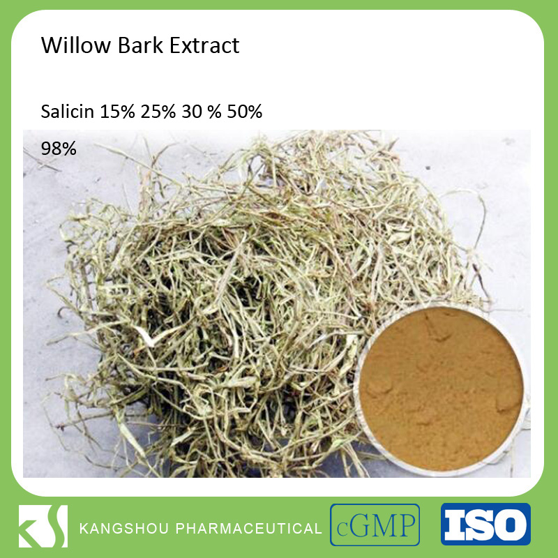 100% Natural Extraction Salicin White Willow Bark Extract