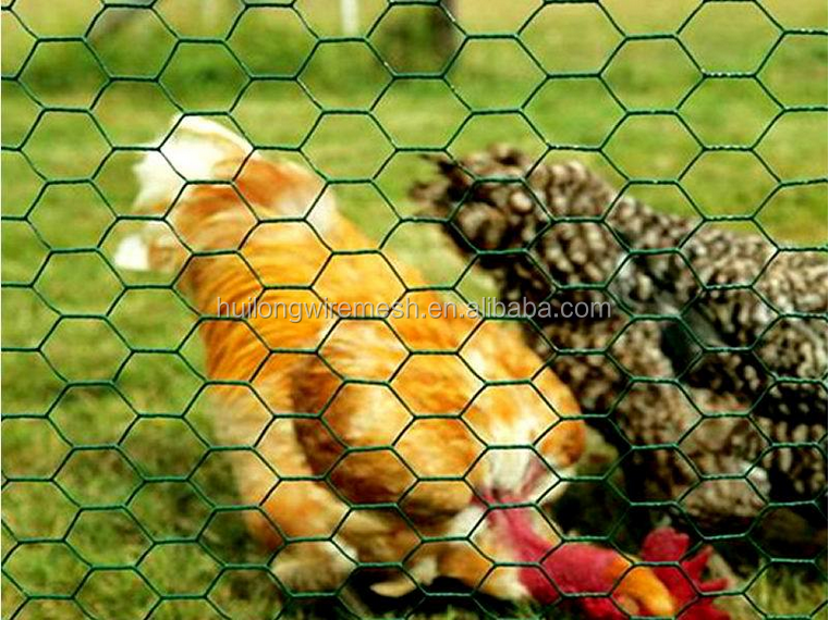 Green vinyl coated chicken wire cage for layers