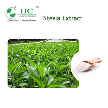 GMP Factory Supplier Stevia Bulk